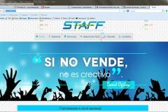 Staff Group